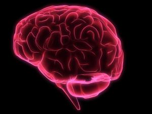 Hoe jouw brein jou saboteert (en wat eraan te doen) volgens lifecoach
