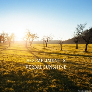 A compliment is verbal sunshine