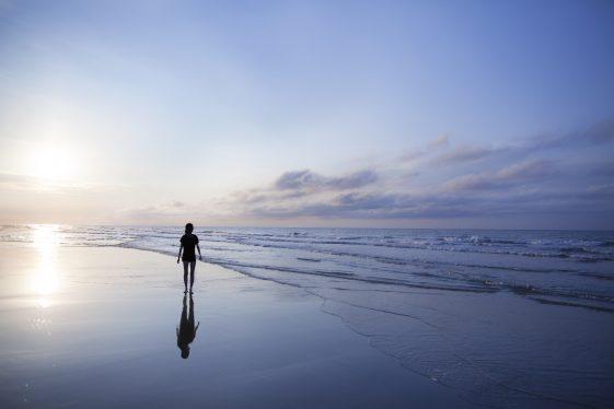 introversie extraversie ambiversie